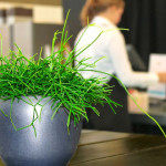 "5 Easy Ways to ""Green"" Your Small Business"