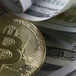 should small business accept cryptocurrency
