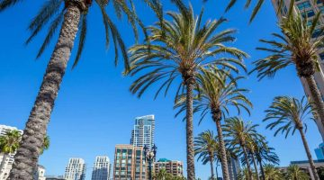 Planning a Company Event in San Diego