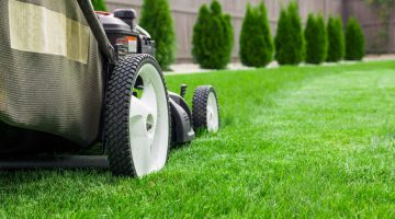 Tips for Starting (and Growing) Your Lawn Maintenance Business