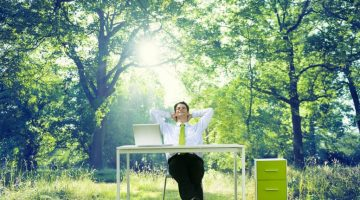 Developing a Stress-Free Workplace