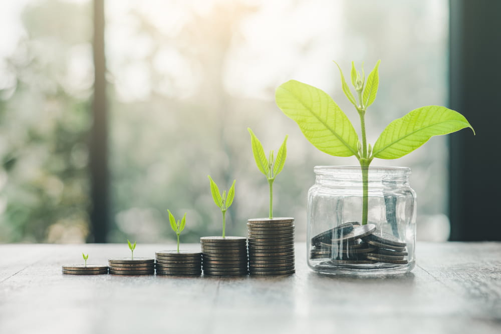 The Eco-Friendly Guide for Business Growth