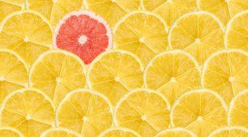 5 Tips for Growing a Profitable B2B Company
