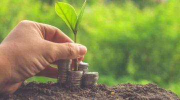 Innovative Investment Opportunities for Modern Investors