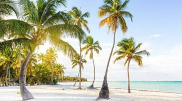 Want an Escape to Paradise During the Pandemic? Move to Barbados!