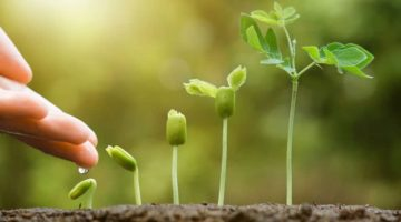 8 Actionable Ways You Can Improve Business Growth