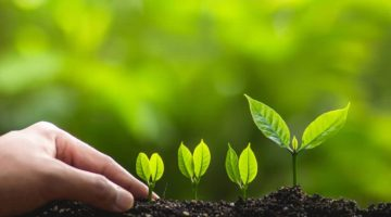 Why Growing Companies Need to Grow Their Sales Teams Too