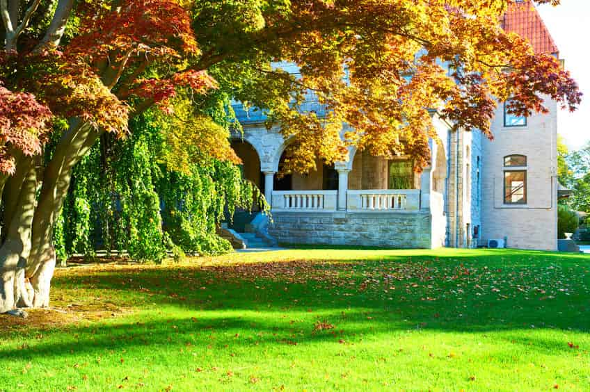 3 Things To Do for Your Home before Autumn