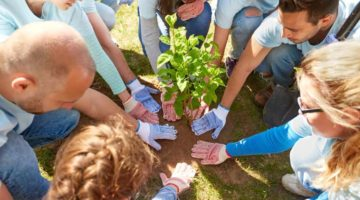 How to Create a Sustainable Business Model