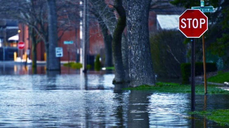 Is Your One-Person Business Ready for a Natural Disaster?