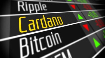 Cardano: Crypto Investors and Risk Management